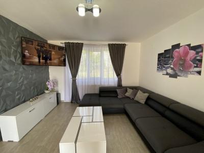Casa individuala deosebita in Sanmihaiu Roman 0% comision   - V1831