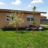 Casa individuala de vanzare 3 camere in Mosnita Noua - ID V293 thumb 14