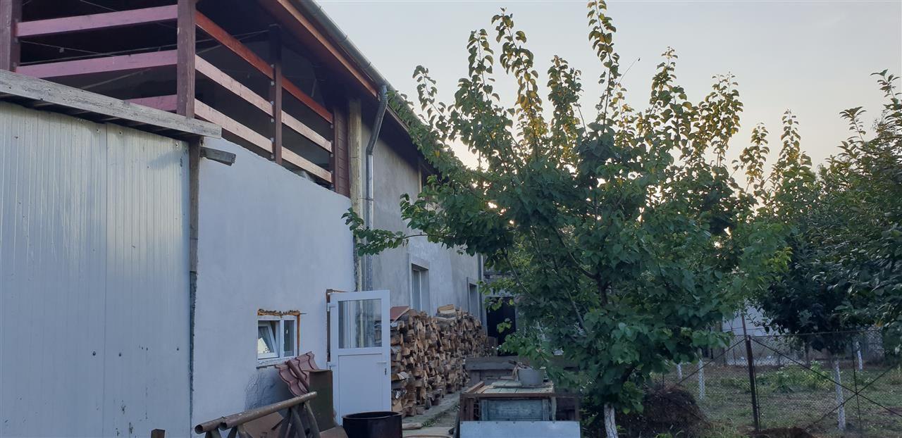 Casa Individuala 6 camere de vanzare Mosnita Noua - ID V426 5