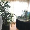 COMISION 0% Apartament 4 camere de vanzare Zona Lipovei - ID V154 thumb 13