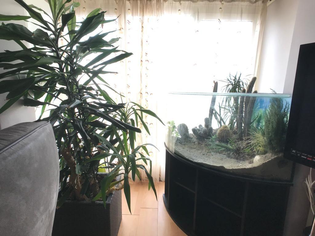 COMISION 0% Apartament 4 camere de vanzare Zona Lipovei - ID V154 13