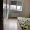 Apartament de inchiriat in Dumbravita - ID C494 thumb 2