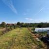 De vanzare duplex in Bucovat (Remetea Mare) - V656 thumb 13