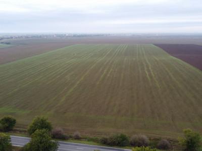 Teren Agricol | Sananadrei