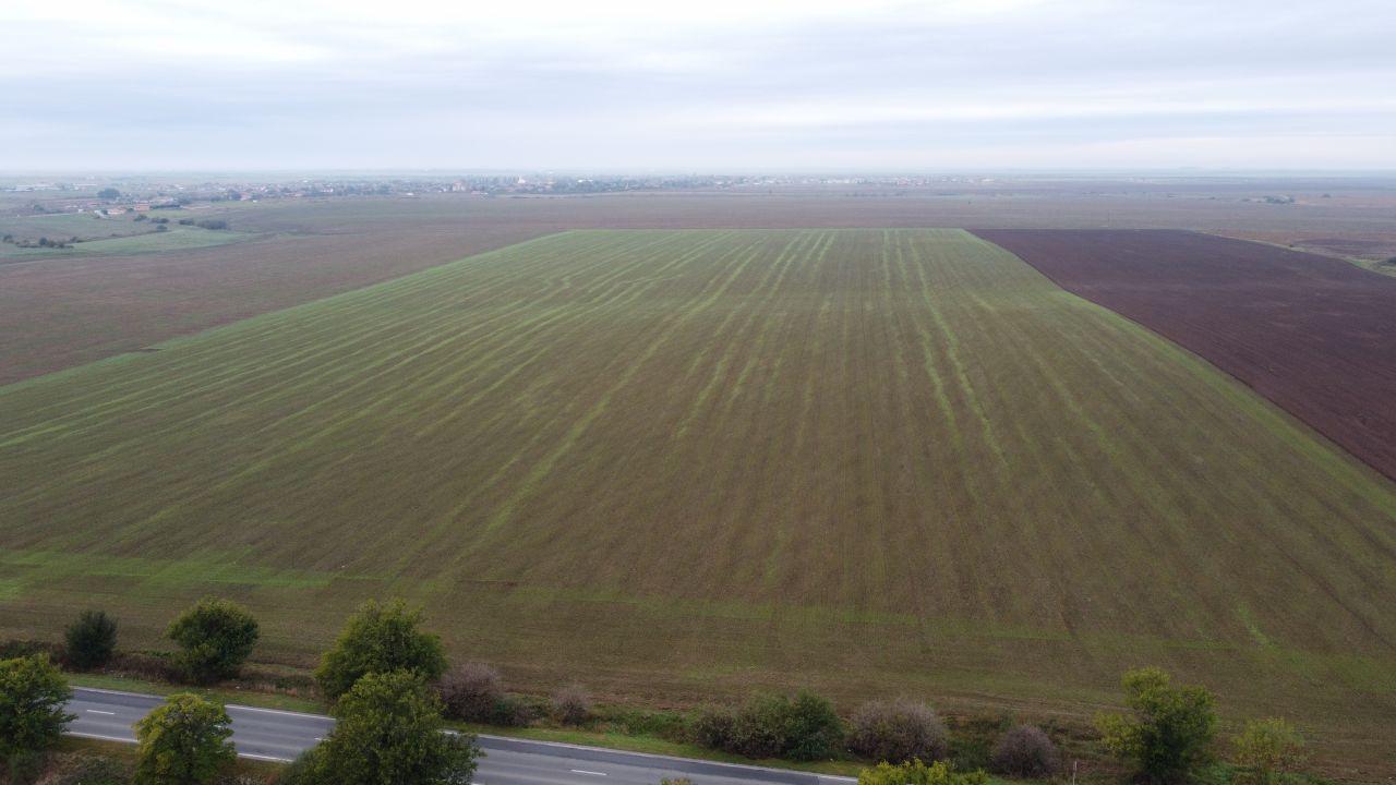 Teren Agricol | Sananadrei 1