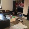 Apartament cu 2 camere, decomandat, de vanzare, Calea Torontalului thumb 9