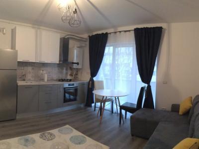 Apartament cu 2 camere, decomandat, de inchiriat, zona Lipovei.
