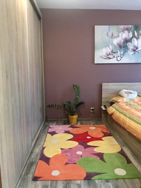 Apartament spatios cu 2 dormitoare si living, de vanzare, zona Aradului 9