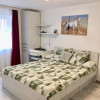 Apartament cu 1 camera, decomandat, de vanzare, zona Lipovei. thumb 1