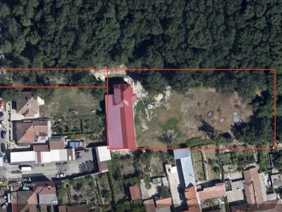 De inchiriat Spatii de birouri + hala depozitare - teren 6.000 mp